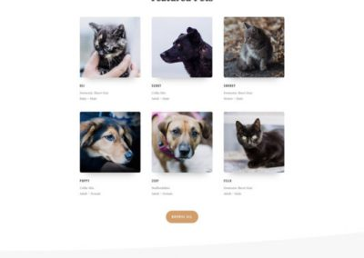 10 Animal shelter