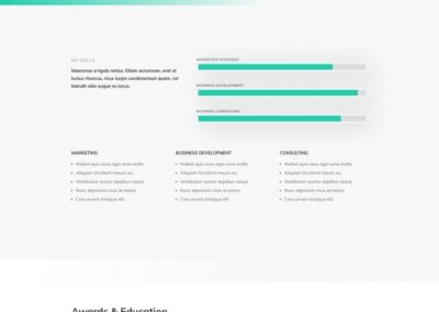 91 Professional CV